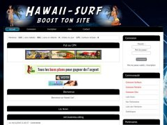 Hawaii-Surf